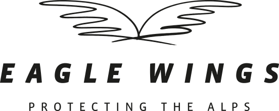 Logo of the Eagle Wings Foundation.